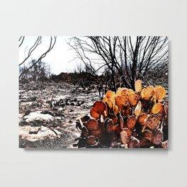 Fire Brings Life  Metal Print