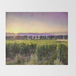 grapevine field Throw Blanket