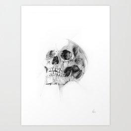 Skull 52 Art Print