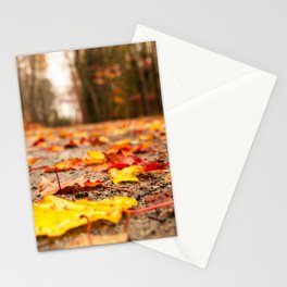 Fall on the Road Stationery Cards