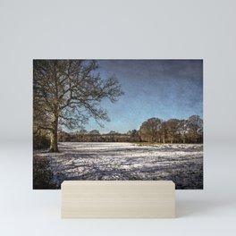 Snowy Tidmarsh Meadows Mini Art Print