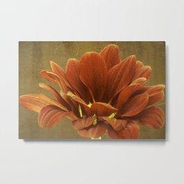 Vintage Chrysanthemum Metal Print