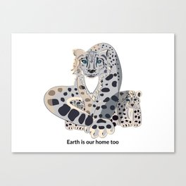 Earth is our home too. Snow leopards. Canvas Print