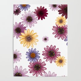Multicolored natural flowers 13 Poster