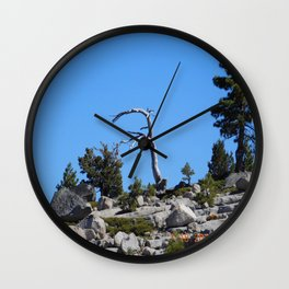 Rubicon Trail California-1, just a part of the trail. Wall Clock