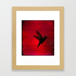 Hummingbird Behind the Red Blinds by CheyAnne Sexton Framed Art Print
