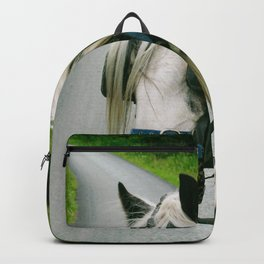 Carriage ride Ireland  Backpack