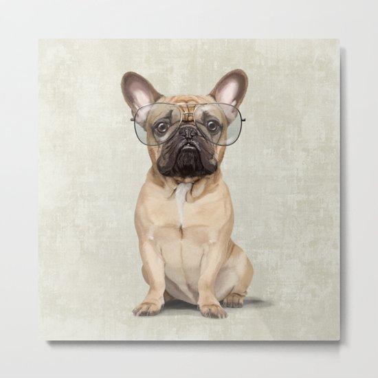 Mr French Bulldog Metal Print