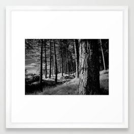 the forest by the sea Framed Art Print