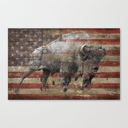 American Bison 2 Canvas Print