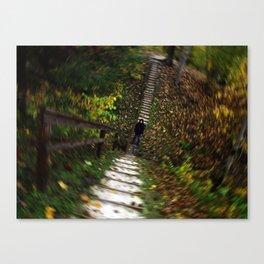 Autumn Swirl of Leaves Canvas Print