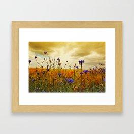 Summefield Impressions Framed Art Print