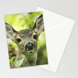 Portrait of a Young Deer Stationery Cards