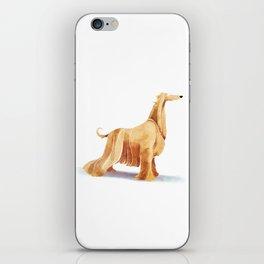 Afghan hound iPhone Skin