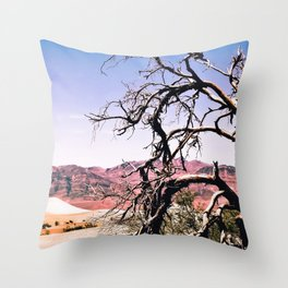 tree in the desert with mountain and blue sky in summer at Death Valley national park, USA Throw Pillow