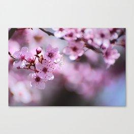 New pink spring. Pink dreams Canvas Print