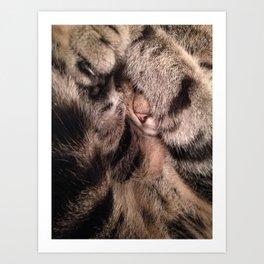 Amos in fur Art Print