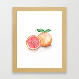 Watercolour Grapefruit Framed Art Print