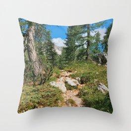 Path through the mountain forest Throw Pillow