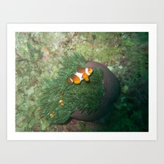 Nemo has a sibling Art Print