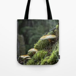 Little Things in a Big Forest Tote Bag