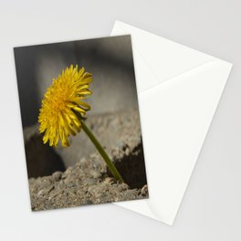 Dandelion That Grew From Concrete Stationery Cards