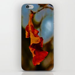 The last leaf standing... iPhone Skin