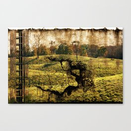 landscape with a ladder Canvas Print