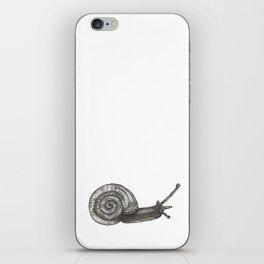 A snail named Benjamin iPhone Skin