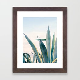 Coastal Agave Cactus Framed Art Print