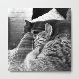 Nap Time... Metal Print