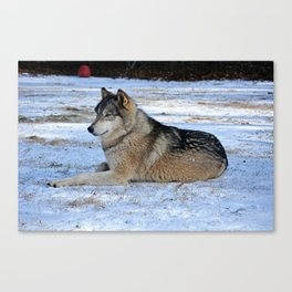 Shango snow Canvas Print