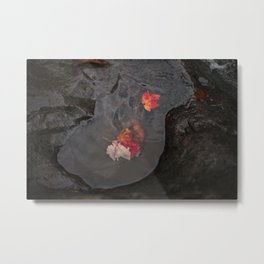 Leaves In a Puddle Metal Print