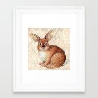 rabbit Framed Art Prints featuring Rabbit by Patrizia Ambrosini