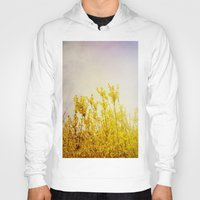coldplay Hoodies featuring And it Was All Yellow by Olivia Joy StClaire