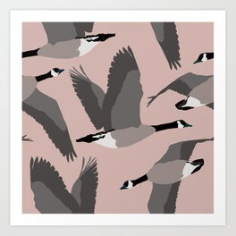 Canada Geese Flying in Buff Art Print