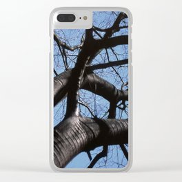 maple tree in winter Clear iPhone Case