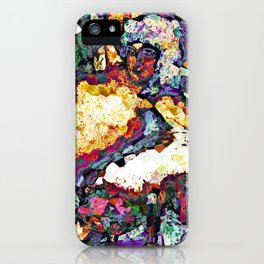 Follies iPhone Case