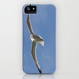 Seagull patrol  iPhone Case