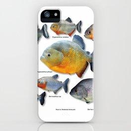 Piranha family iPhone Case