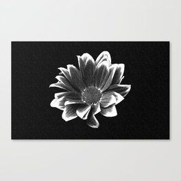 Margriet Flower Drawing Canvas Print