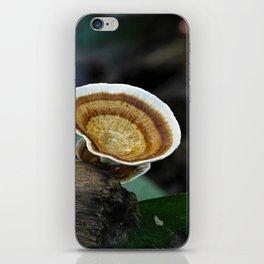 Fungi on tree stump iPhone Skin
