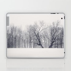 Into the Blizzard Laptop & iPad Skin