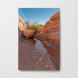 After the Rain - III, Valley_of_Fire Canyon, NV Metal Print