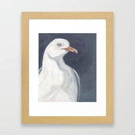 Herring Gull Portrait Bird Beach Framed Art Print