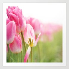 I Dream in Pink Art Print