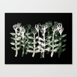 watercolor flowers on black Canvas Print