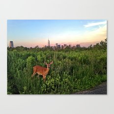 The NYC Deer Canvas Print
