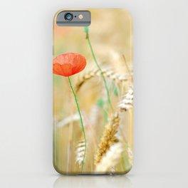 Poppy close up in wheat field iPhone Case