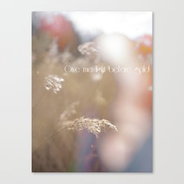 light before gold Canvas Print
